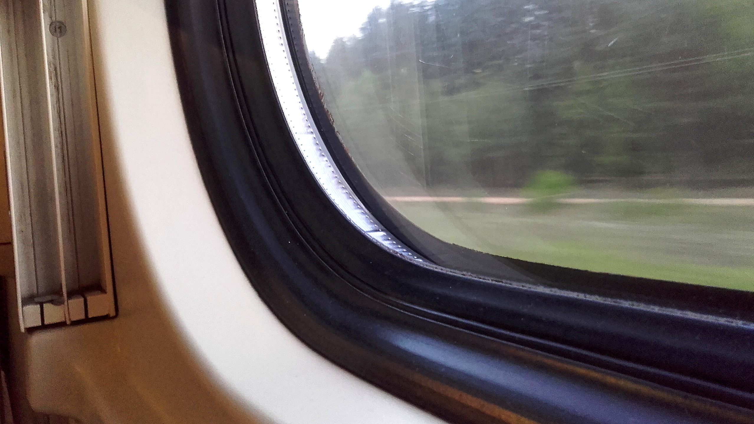 A train window with a forest flashing by. The kindness of strangers was needed when the train was delayed.