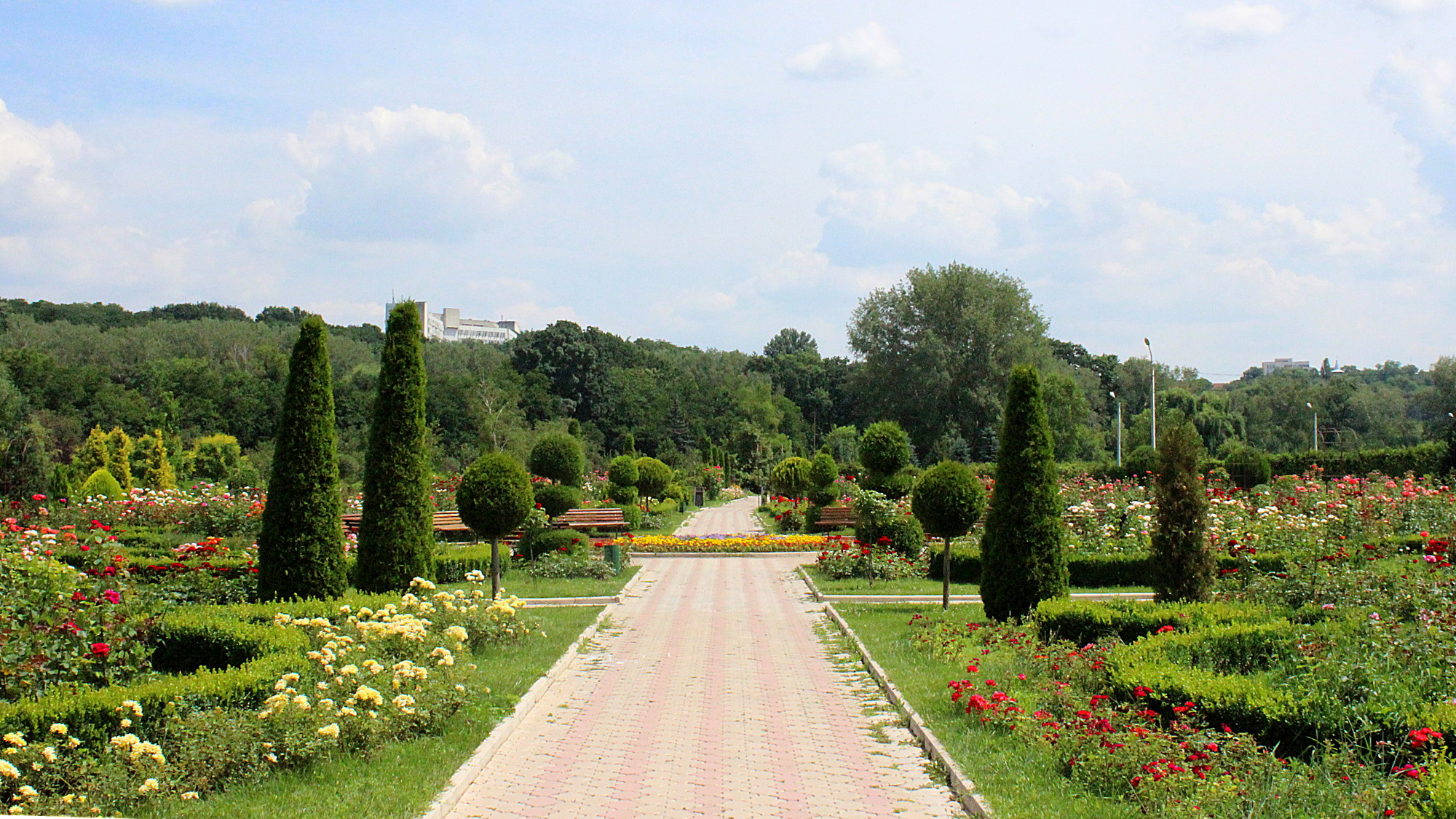 A wide, tiled walking path in the National Botanical Garden of Moldova with flowers on both sides.