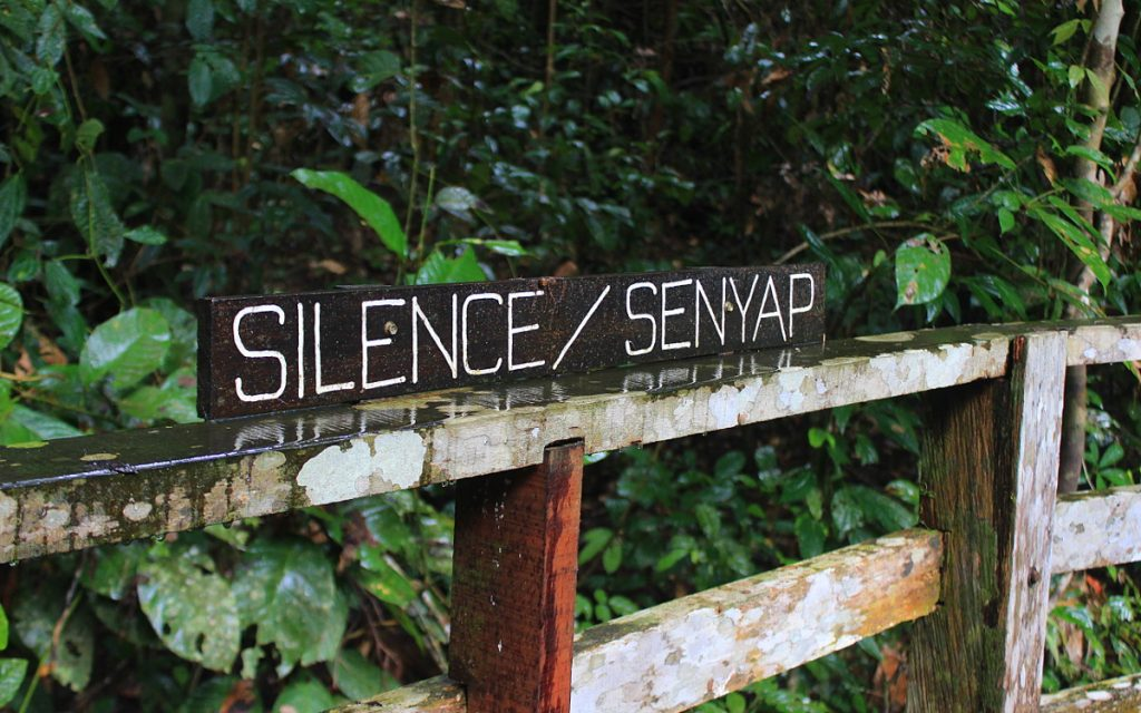 The blog was silent, and here's a picture of a sign that says silence. Clever, eh?