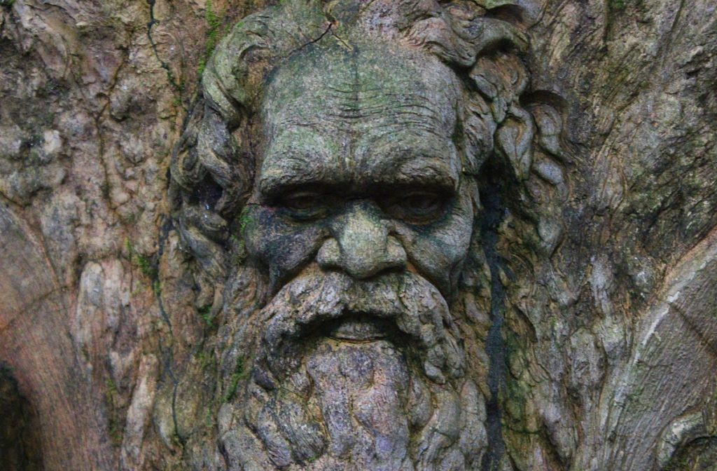 An Aboriginal face in William Ricketts Sanctuary.